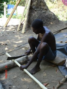 Peje, an Andamanese, cutting a bamboo for making bows Credit: Anvita Abbi