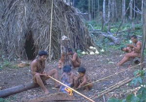 Hotï people drying cane for blowguns Credit: Stanford Zent
