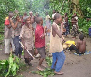 A dance of the Bambuti Community of Semliki Forest, Western Uganda. Credit: Robert Wild