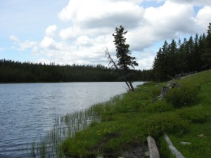 Little Fish Lake, Photo by Luisa Maffi, 2011