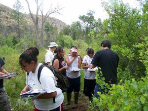 Apache students identifying plants at Goshtlish Tú Bil Sikané Credit: Julee DeHose