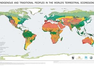 Indigenous and Traditional Peoples in the World's Terrestrial Ecoregions
