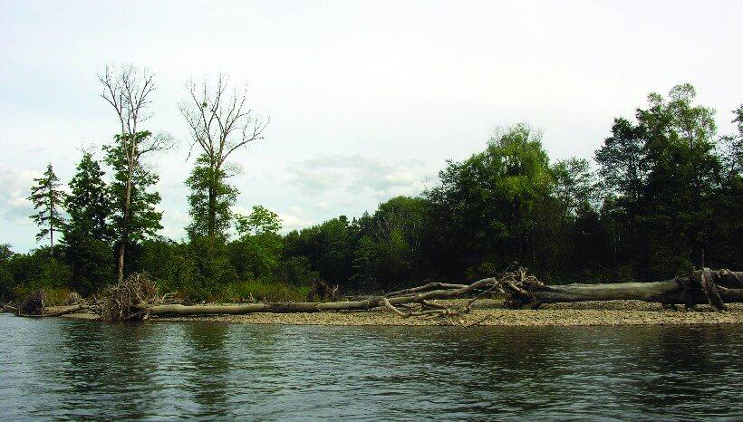 Bikin River