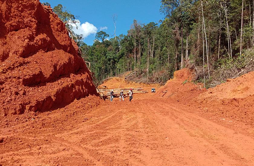 plantation company's bulldozers