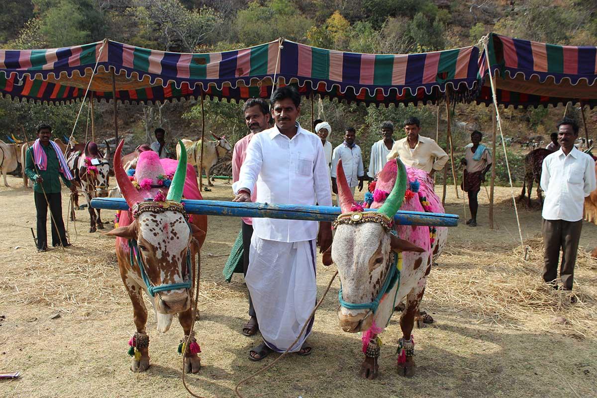 Hanumanthu Gantala