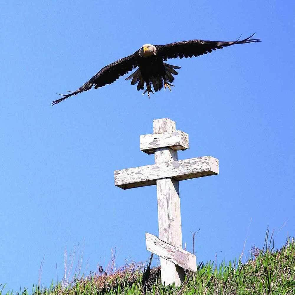 Unangan storytellers - eagle