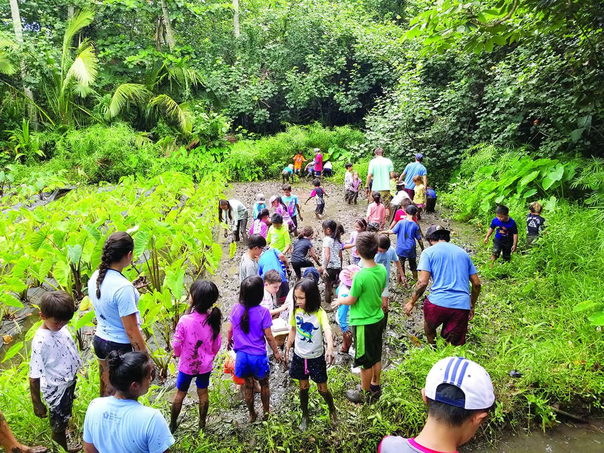 children in taro patch