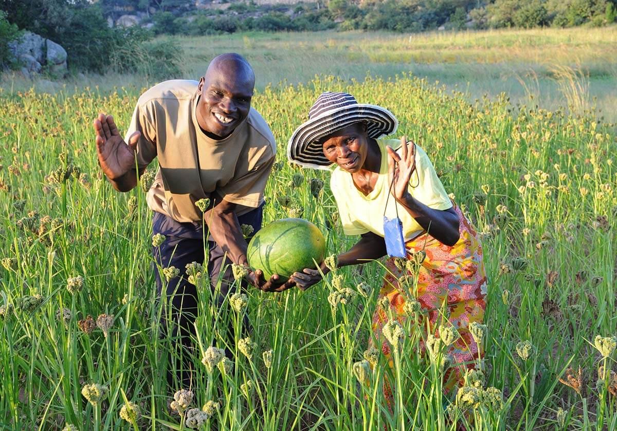 Community in Zimbabwe