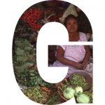 spelling Terralingua in images